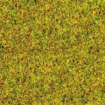 Green Sands Lime Lychee Can 250ml summer green flock from gaugemaster
