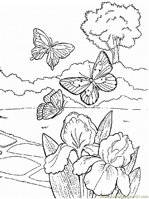 coloring pages of animals and flowers coloring pages flowers with animals cartoons gt flowers
