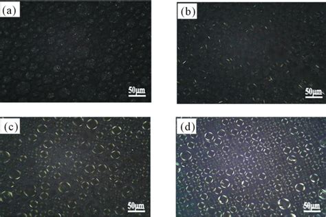 pattern formation of liquid crystal study on the formation and properties of liquid crystal