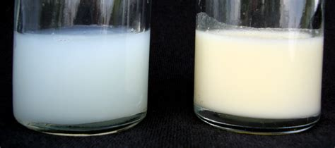 breast milk the shaped foremilk and hindmilk in quest of