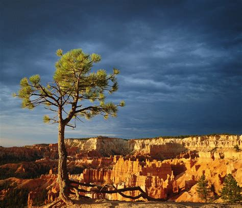 beautiful places to visit bryce canyon utah usa beautiful places to