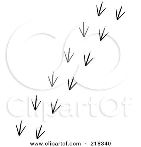 Black And White Trail Of Bird Tracks Posters, Art Prints