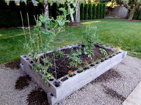 Cinder Block Raised Bed by Raised Garden Bed W Cinder Blocks Bullock Household