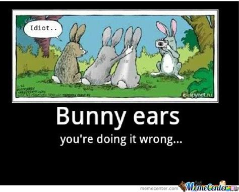 Chocolate Easter Bunny Meme - rabbit ramblings funny bunny memes