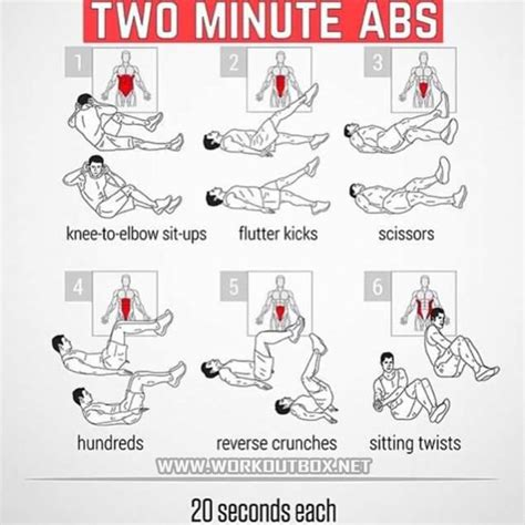 best 25 sixpack ideas on sixpacks