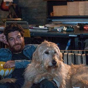 filme schauen dog days dog days herz hund happy end film 2018 filmstarts de