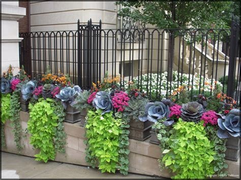 Container Planter Design Ideas by Tu Bloom Garden Landscape Design Services Residential