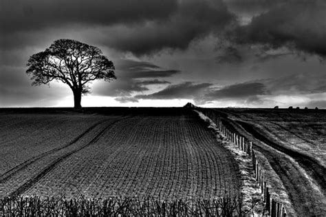Landscape Photography Research Research Journal Landscape Photography