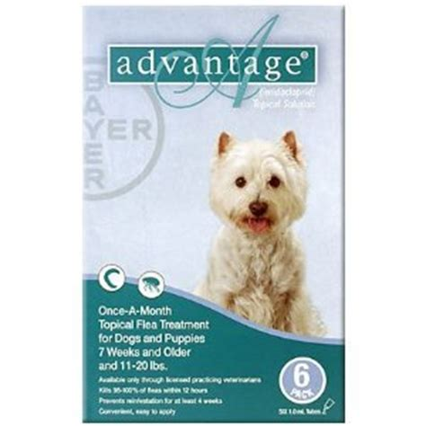 best flea killer for dogs advantage flea for dogs reviews viewpoints