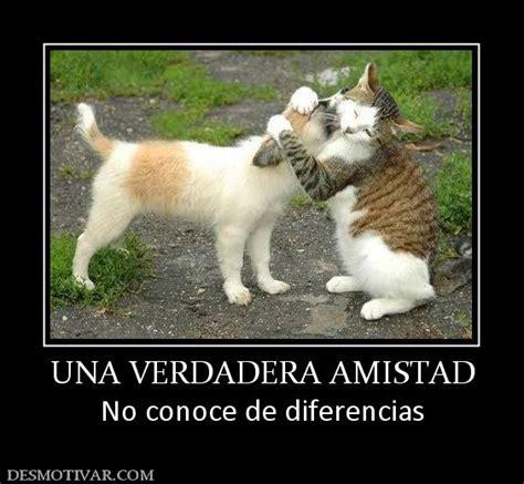 imagenes una amistad verdadera desmotivaciones una verdadera amistad no conoce de diferencias