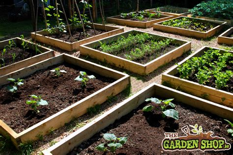 Raised Bed Garden Layout Design Raised Bed Layout Howtogarden Ie