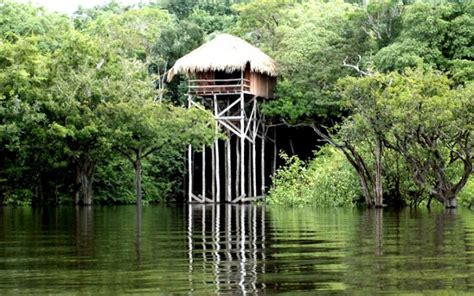 tree houses for rent in ohio 7 romantic tree house rentals for v day brit co