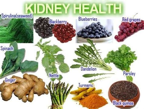 whole grains kidney disease 1000 images about healthy food on seasons