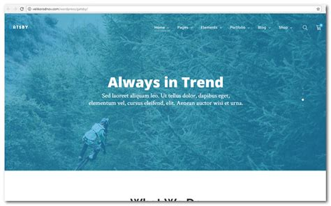 Gatsby V1 1 Ecommerce Theme 25 best ecommerce themes time to improve your webshop