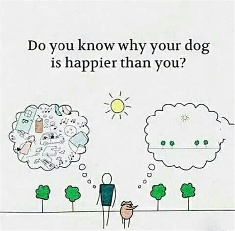 why do puppies your do you why your is happier than you realfunny