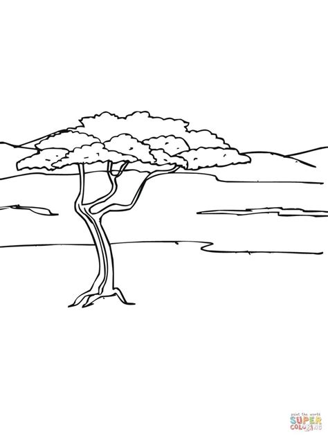 coloring page of grasslands acacia tree in savanna coloring page jpg 1200 215 1600