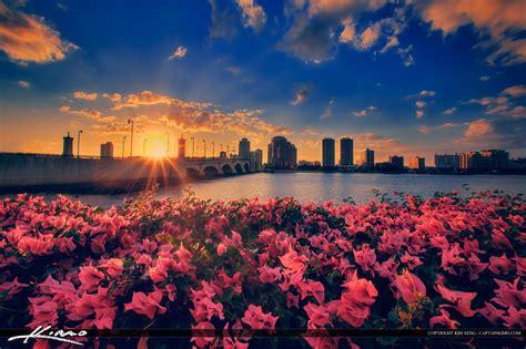 Skyline Flower Gardens West Palm Skyline Flower With Intracoastal Waterway Royal Stock Photo