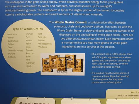 whole grains yes or no grain from field to flour the whole grains council