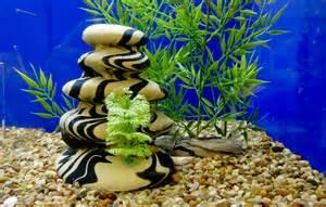 decoration zen aquarium id 233 es de d 233 coration et de