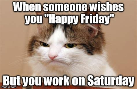 Happy Saturday Meme - image tagged in friday work disappointed cat imgflip