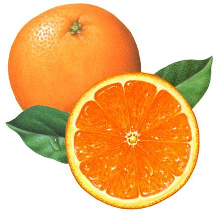 whole orange with a cut orange half and leaves food clip