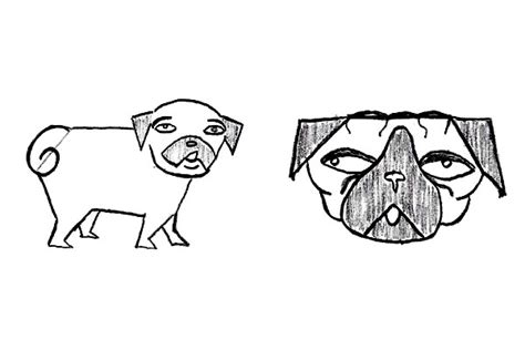 why do pugs eat their own melvin pe 241 a author at dogster page 3 of 8