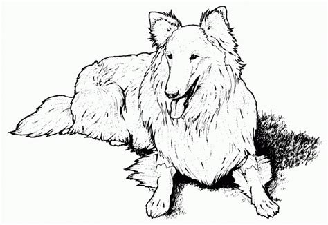 coloring pages of dogs online free printable dog coloring pages for kids