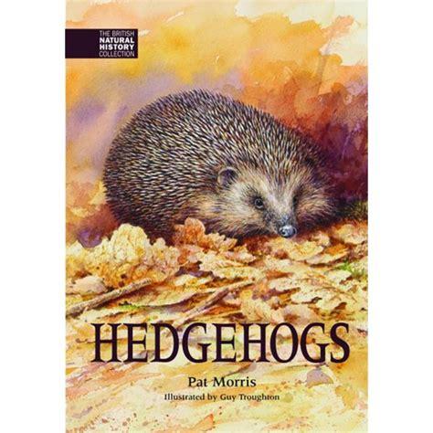 hedgehog picture book hedgehog book
