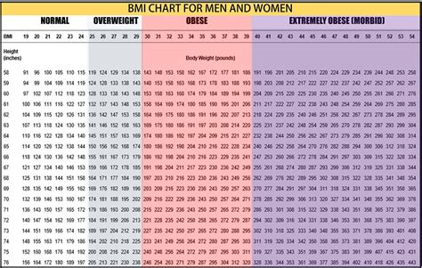 weight chart for weight chart for what s your ideal weight