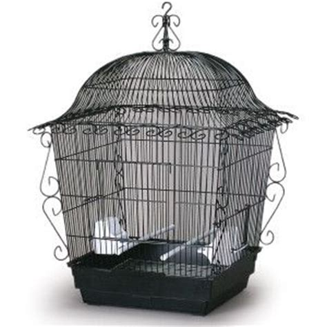cages petsmart prevue pet products scrollwork bird cage cages petsmart tanked