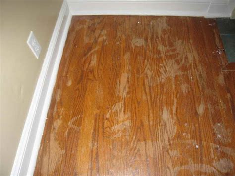 flooring how to refinish hardwood floor without sanding