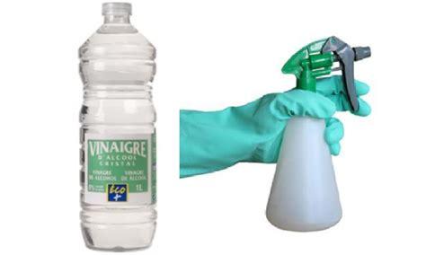 Entretien Lave Vaisselle Vinaigre Blanc by Entretien Lave Vaisselle Vinaigre Blanc Great Nettoyer