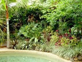 Tropical Gardens Of by Temperate Climate Tropical Garden Gardendrum