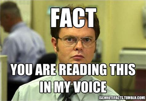 Dwight Meme - 30 most funniest office meme pictures that will make you laugh