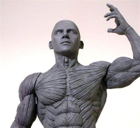 male artist models review artist s anatomy male anatomy model