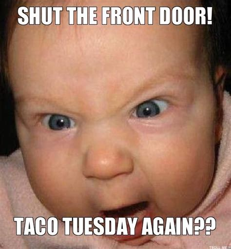 Funny Tuesday Meme - best 25 taco tuesday meme ideas on pinterest pictures