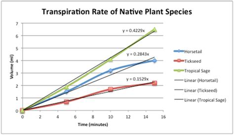 design experiment rate of transpiration just breathe green measuring transpiration rates