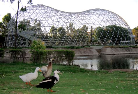 House Design Pictures In South Africa by Aviaries Domes Manufacturer Home Aviary Design Geo Domes