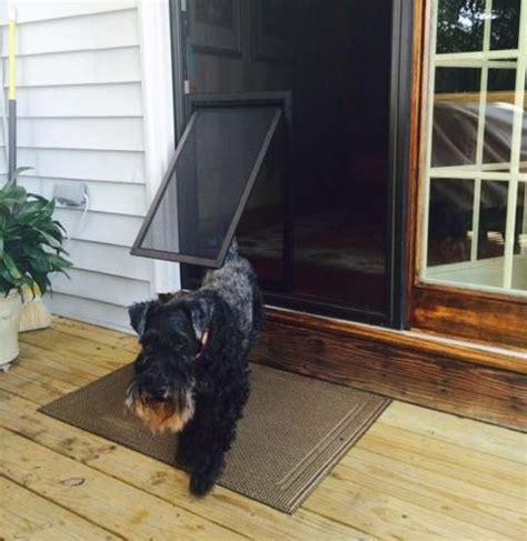 screen door with door built in screen door with pet door styles and design to improve your home home doors design