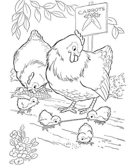 Early Bird Coloring Page | farm animal chicken coloring page early bird gets the