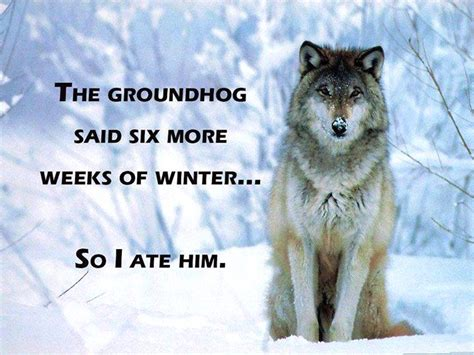 groundhog day idiom groundhog consequences arnold zwicky s