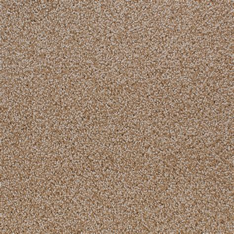 area rugs ta shop stainmaster active family oak grove brown carpet sle at lowes
