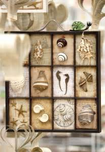 beach shadow box great for my seashell collection home