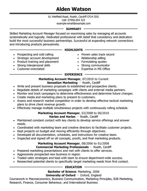 sle resume insurance account executive biography best account manager resume exle livecareer
