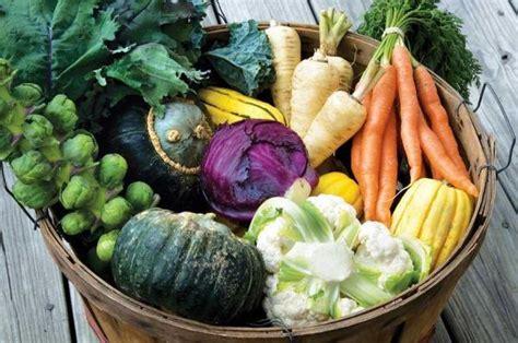 start a fall winter vegetable garden