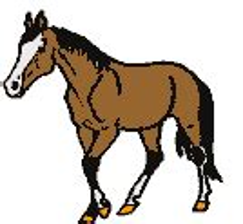 imagenes gif yegua imagenes de caballos y yeguas animadas