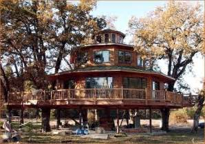 treehouse masters http www treehouses