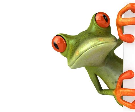 free images frog images free cliparts co