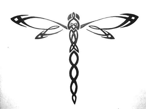 celtic dragonfly tattoo designs dragonfly free pictures