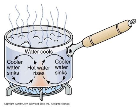 what are some convection exles in liquids and gases